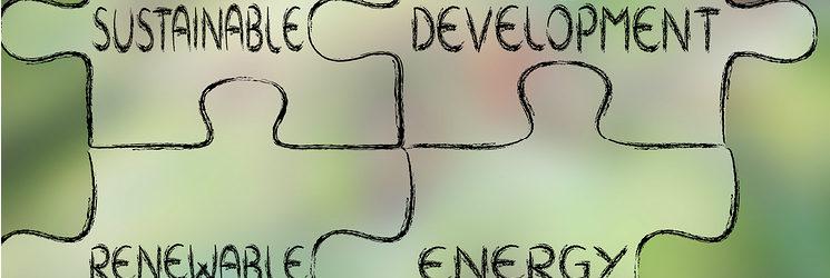 Environment On the Agenda